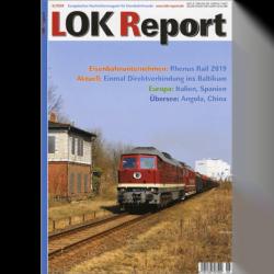 LOK Report 6/2020