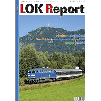 LOK Report 11/2020